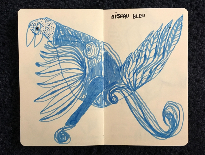 oiseau bleu.jpg