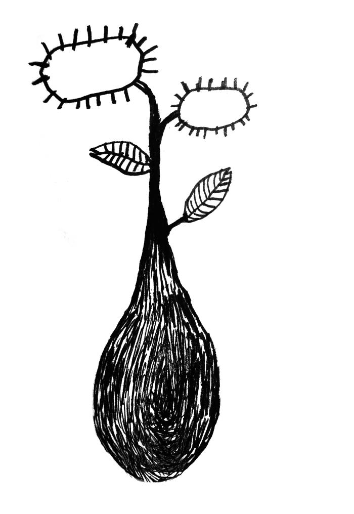 plantes Kopie